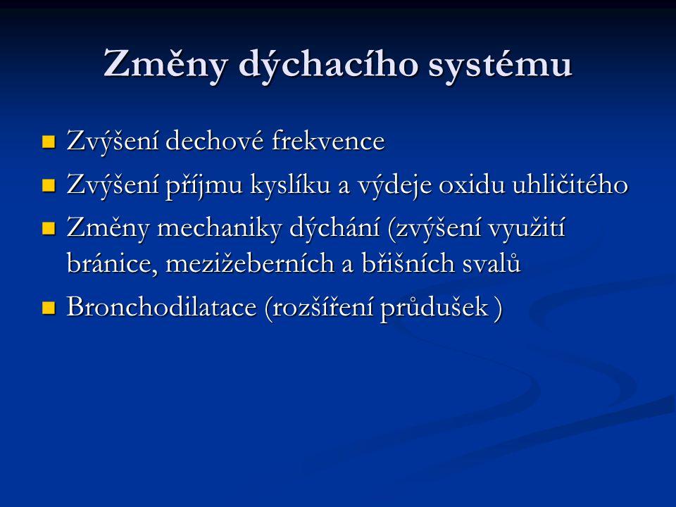 Změny dýchacího systému Zvýšení dechové frekvence Zvýšení dechové frekvence Zvýšení příjmu kyslíku a výdeje oxidu uhličitého Zvýšení příjmu kyslíku a