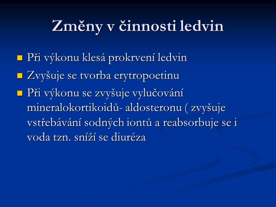 Změny v činnosti ledvin Při výkonu klesá prokrvení ledvin Při výkonu klesá prokrvení ledvin Zvyšuje se tvorba erytropoetinu Zvyšuje se tvorba erytropo