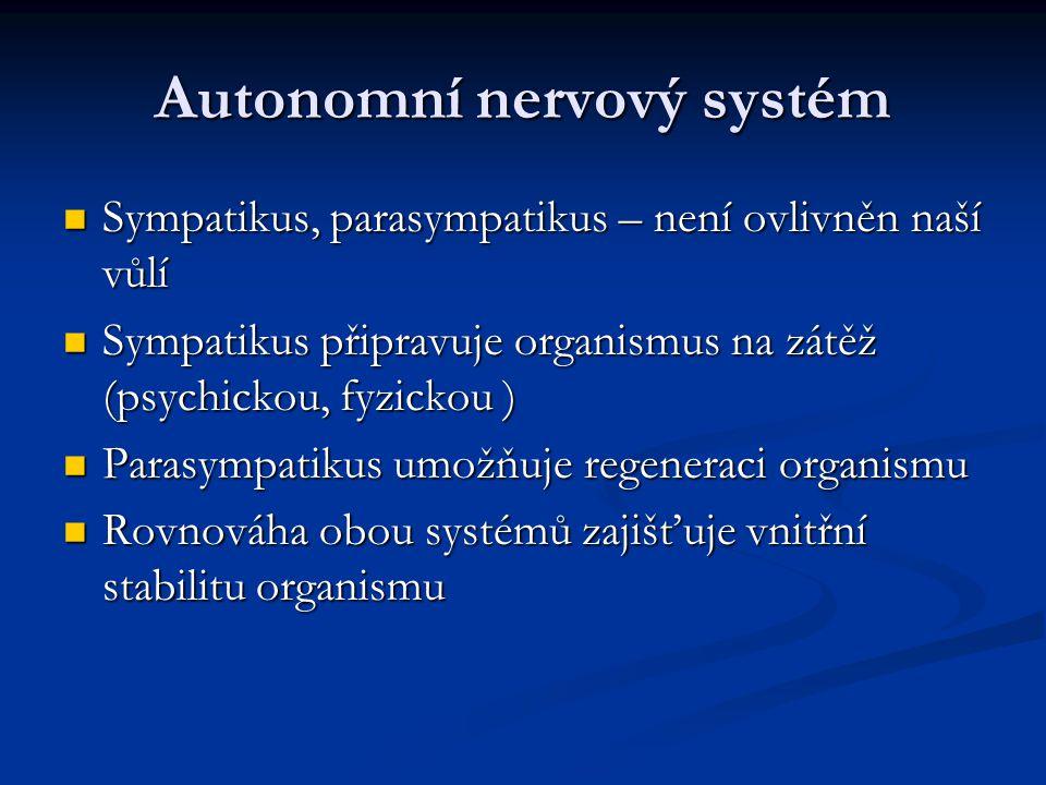 Autonomní nervový systém Sympatikus, parasympatikus – není ovlivněn naší vůlí Sympatikus, parasympatikus – není ovlivněn naší vůlí Sympatikus připravu