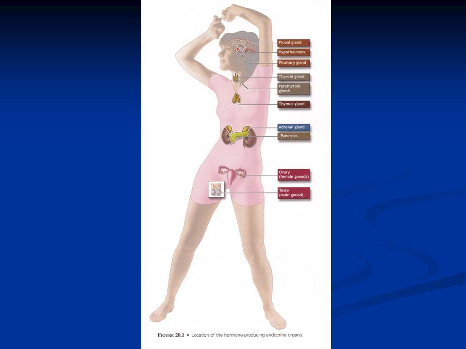 Fyziologické hladiny testosteronu Muži: 3,65 – 8,15 ng/ml Muži: 3,65 – 8,15 ng/ml Ženy : 0,22 – 0,66 ng/ml Ženy : 0,22 – 0,66 ng/ml stanoveno metodou RIA stanoveno metodou RIA
