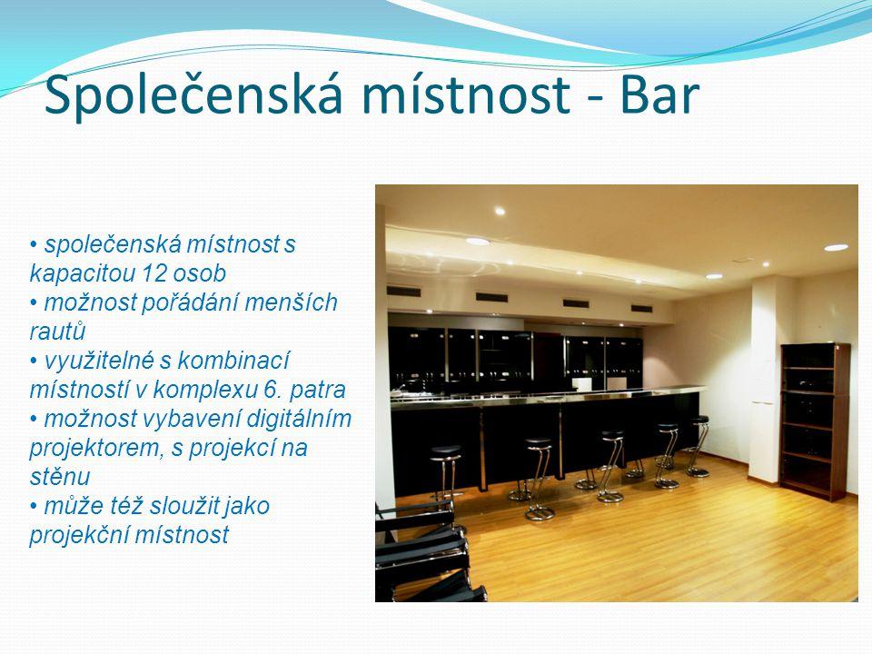 Společenská místnost - Bar společenská místnost s kapacitou 12 osob možnost pořádání menších rautů využitelné s kombinací místností v komplexu 6. patr
