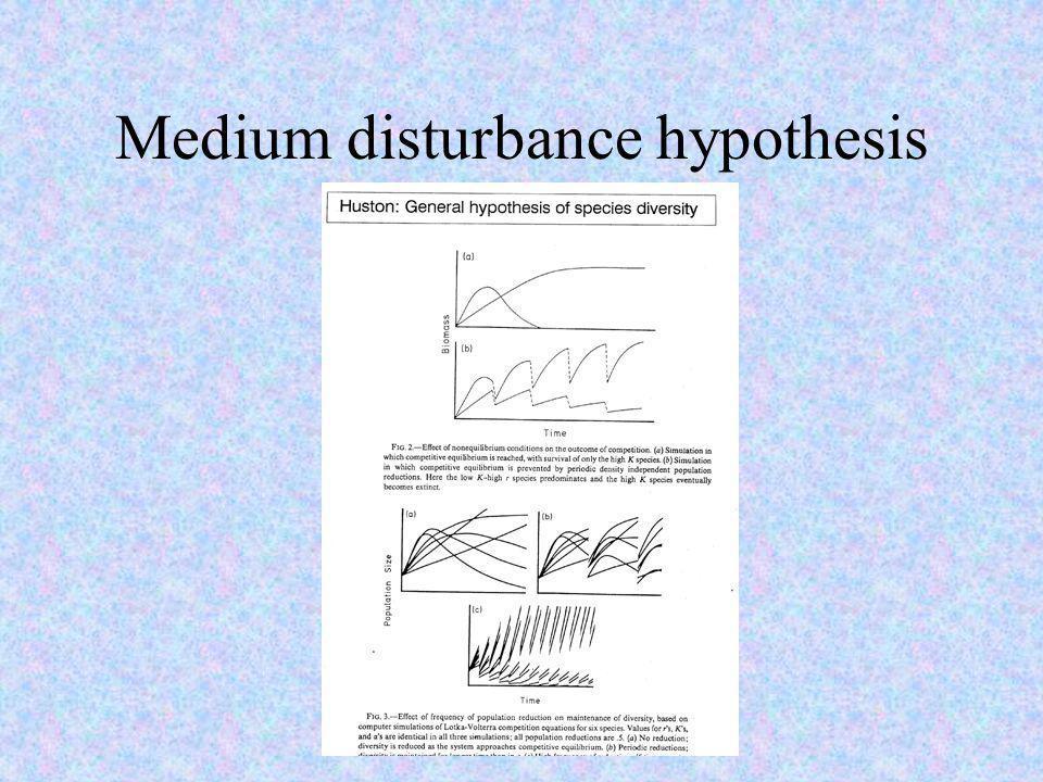 Medium disturbance hypothesis