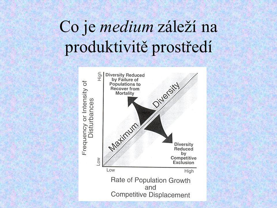 Co je medium záleží na produktivitě prostředí