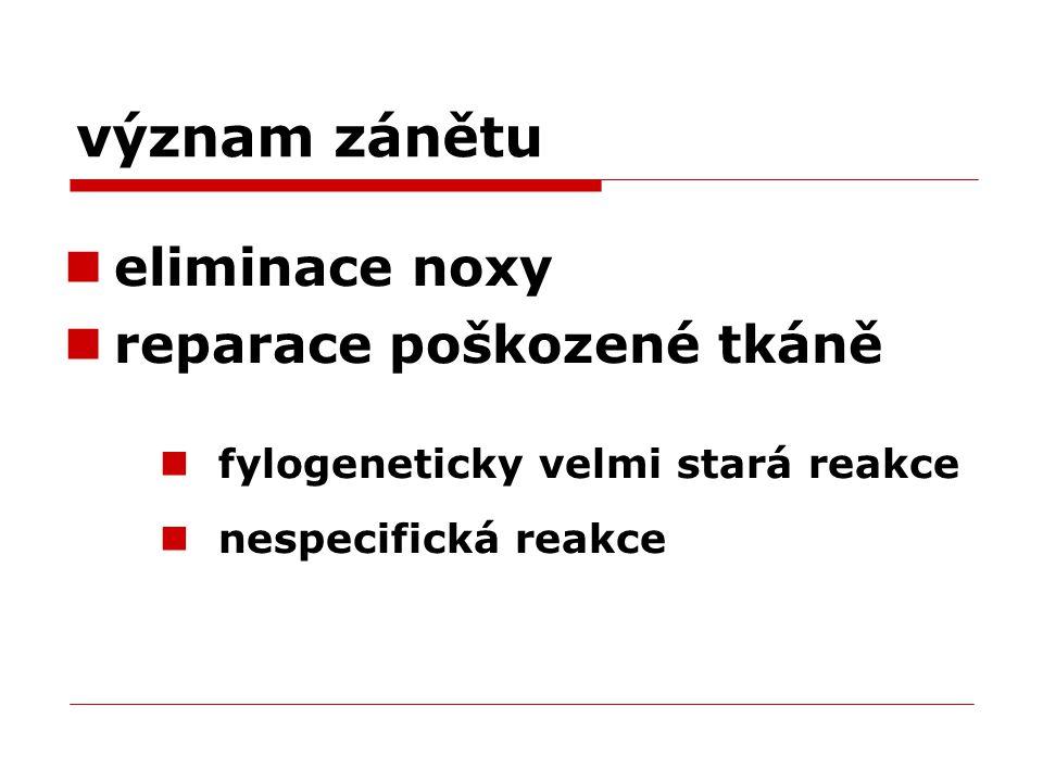 význam zánětu eliminace noxy reparace poškozené tkáně fylogeneticky velmi stará reakce nespecifická reakce
