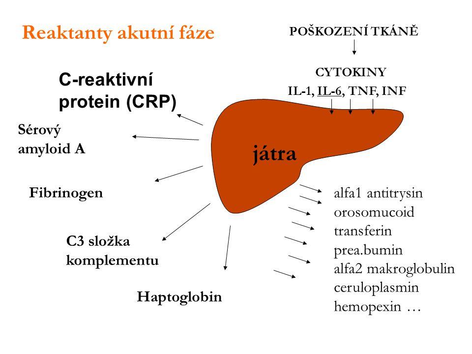 Sérový amyloid A POŠKOZENÍ TKÁNĚ IL-1, IL-6, TNF, INF Fibrinogen Haptoglobin C-reaktivní protein (CRP) C3 složka komplementu CYTOKINY játra Reaktanty