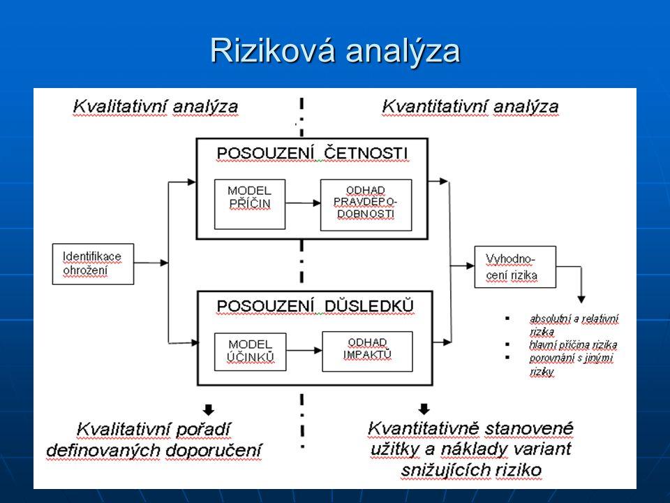 Riziková analýza