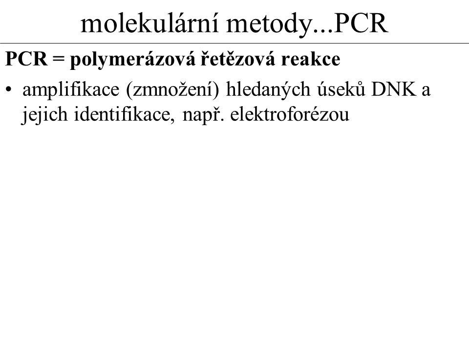 molekulární metody...PCR PCR = polymerázová řetězová reakce amplifikace (zmnožení) hledaných úseků DNK a jejich identifikace, např. elektroforézou