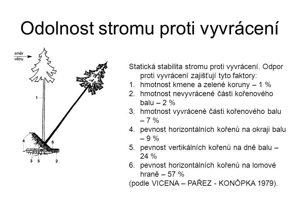 Odolnost stromu proti vyvrácení Statická stabilita stromu proti vyvrácení. Odpor proti vyvrácení zajišťují tyto faktory: 1.hmotnost kmene a zelené kor
