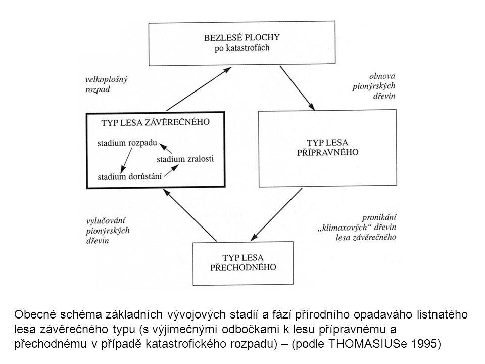 Obecné schéma základních vývojových stadií a fází přírodního opadaváho listnatého lesa závěrečného typu (s výjimečnými odbočkami k lesu přípravnému a