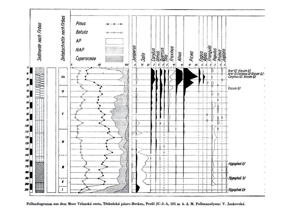 Odolnost stromu proti vyvrácení Statická stabilita stromu proti vyvrácení.