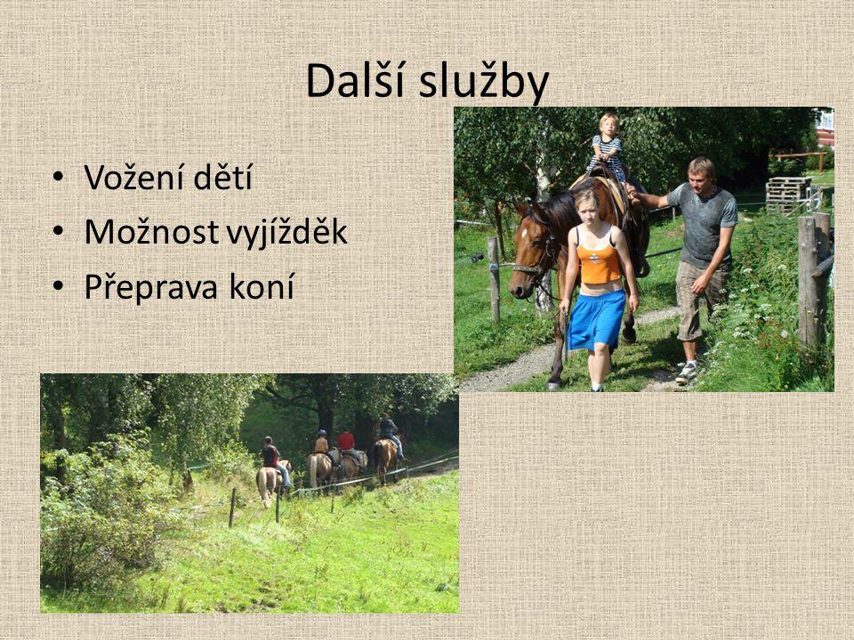 Další služby Vožení dětí Možnost vyjížděk Přeprava koní