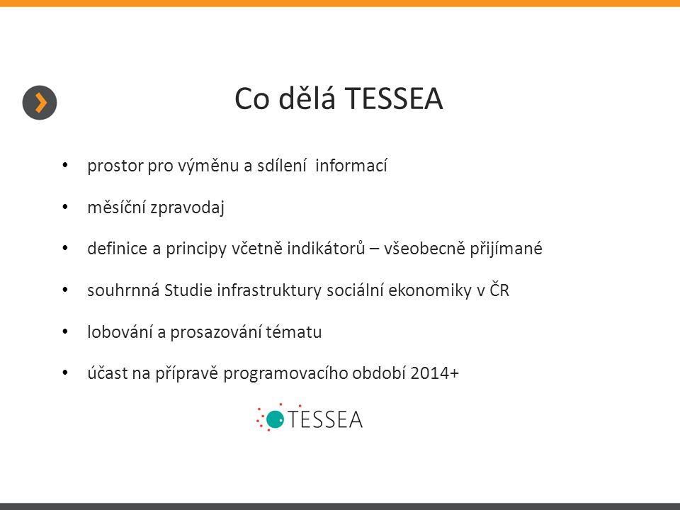 Co dělá TESSEA prostor pro výměnu a sdílení informací měsíční zpravodaj definice a principy včetně indikátorů – všeobecně přijímané souhrnná Studie infrastruktury sociální ekonomiky v ČR lobování a prosazování tématu účast na přípravě programovacího období 2014+