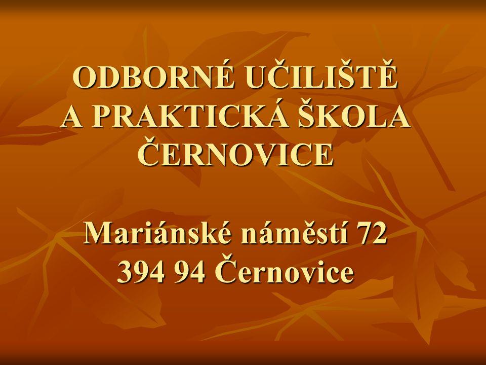 VEDENÍ ŠKOLY ŘEDITEL Ing., Bc.Karel Matějů ZÁSTUPCE ŘEDITELE PRO TEORETICKÉ VYUČOVÁNÍ Bc.