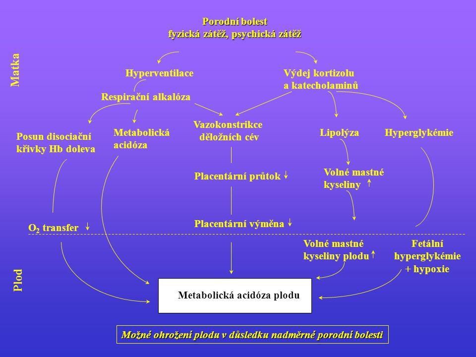 Porodní bolest fyzická zátěž, psychická zátěž HyperventilaceVýdej kortizolu a katecholaminů Placentární průtok Vazokonstrikce děložních cév Placentární výměna Možné ohrožení plodu v důsledku nadměrné porodní bolesti Metabolická acidóza plodu LipolýzaHyperglykémie Volné mastné kyseliny Volné mastné kyseliny plodu Fetální hyperglykémie + hypoxie Metabolická acidóza Respirační alkalóza Posun disociační křivky Hb doleva O 2 transfer Plod Matka