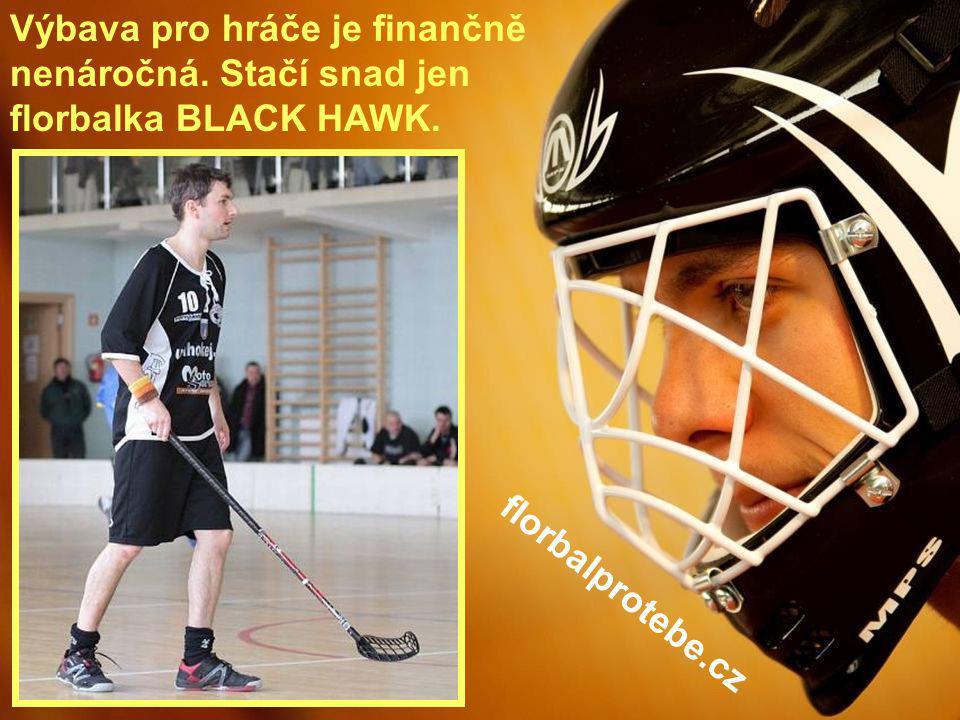 15 Výbava pro hráče je finančně nenáročná. Stačí snad jen florbalka BLACK HAWK. florbalprotebe.cz