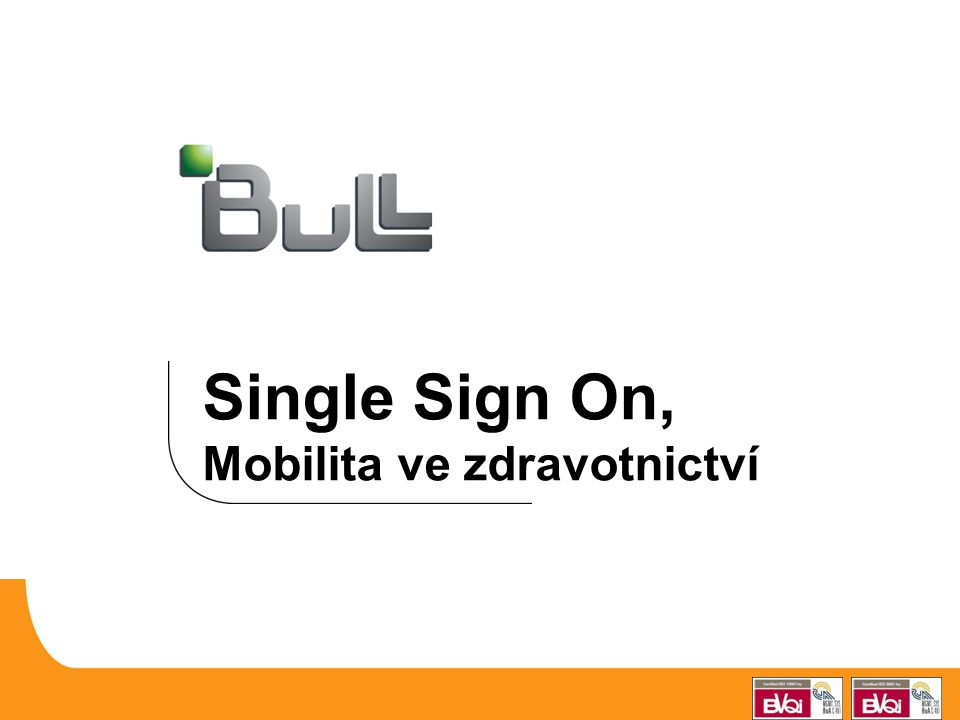 Single Sign On, Mobilita ve zdravotnictví