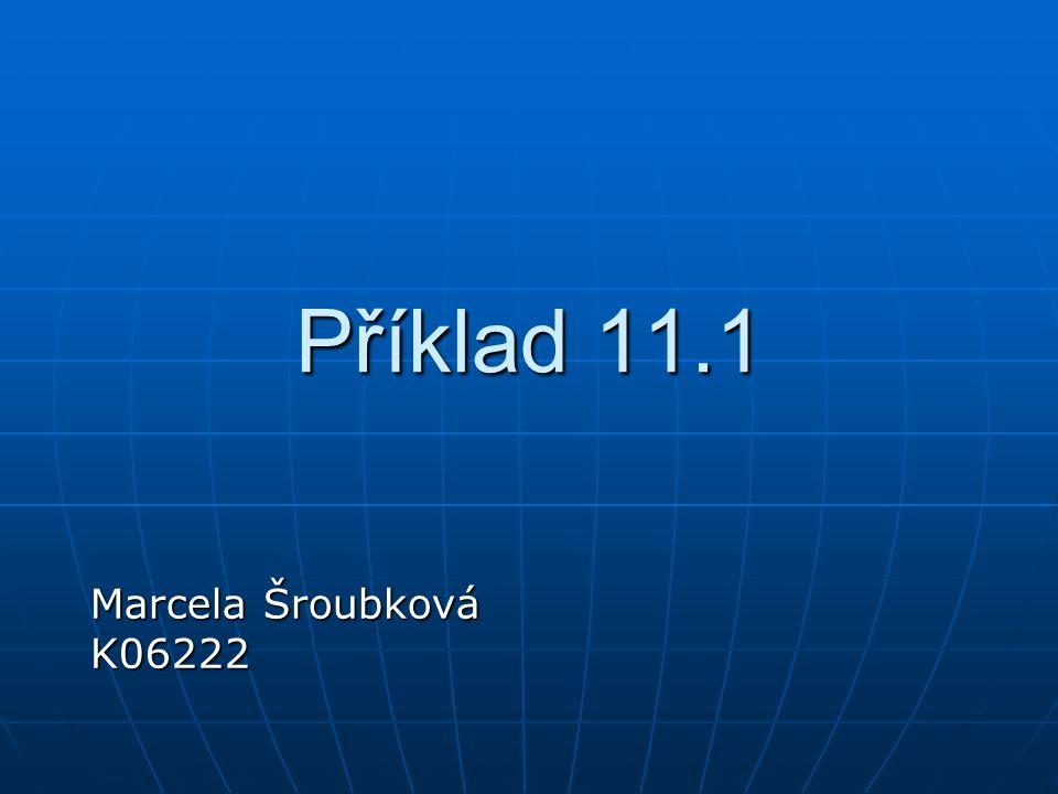 Příklad 11.1 Marcela Šroubková K06222