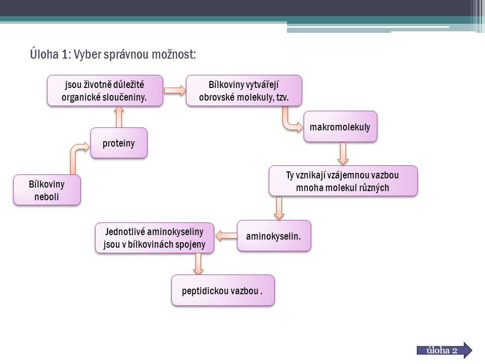 Úloha 1: Vyber správnou možnost: Bílkoviny neboli jsou životně důležité organické sloučeniny. proteiny Bílkoviny vytvářejí obrovské molekuly, tzv. mak