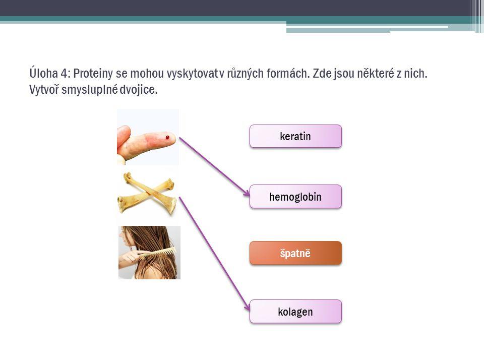 Úloha 4: Proteiny se mohou vyskytovat v různých formách. Zde jsou některé z nich. Vytvoř smysluplné dvojice. keratin hemoglobin špatně kolagen