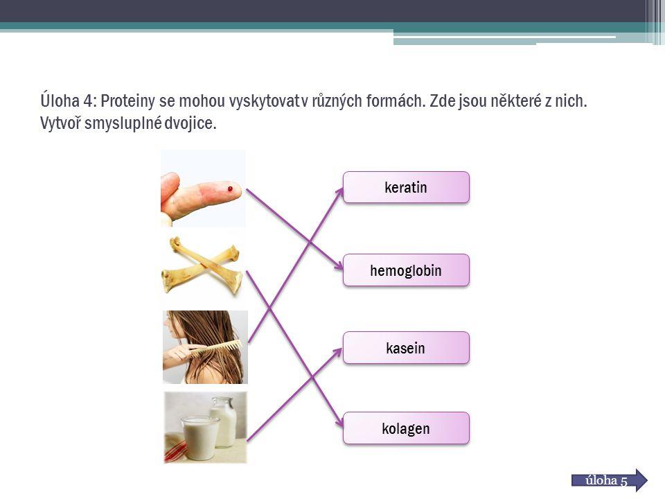 Úloha 4: Proteiny se mohou vyskytovat v různých formách. Zde jsou některé z nich. Vytvoř smysluplné dvojice. keratin hemoglobin kasein kolagen úloha 5