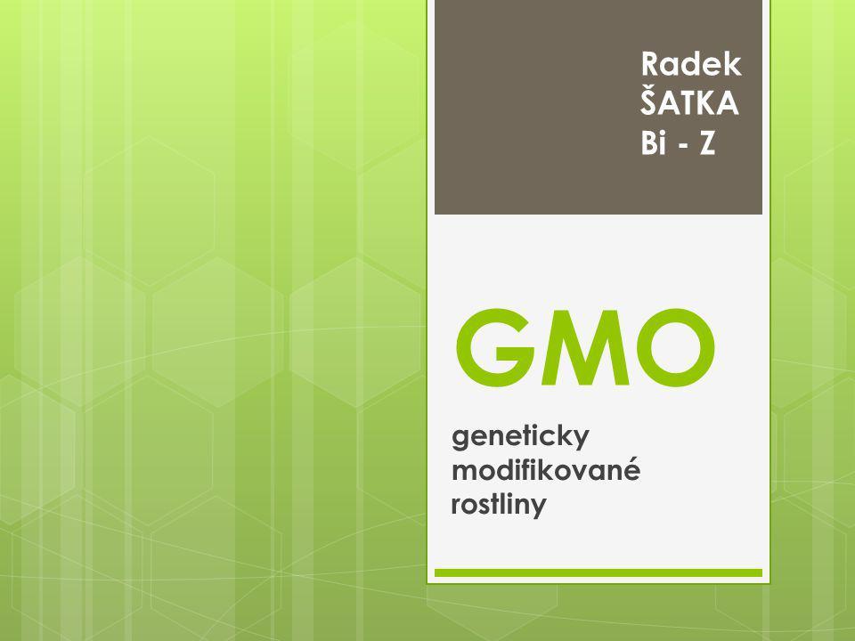 GMO geneticky modifikované rostliny Radek ŠATKA Bi - Z