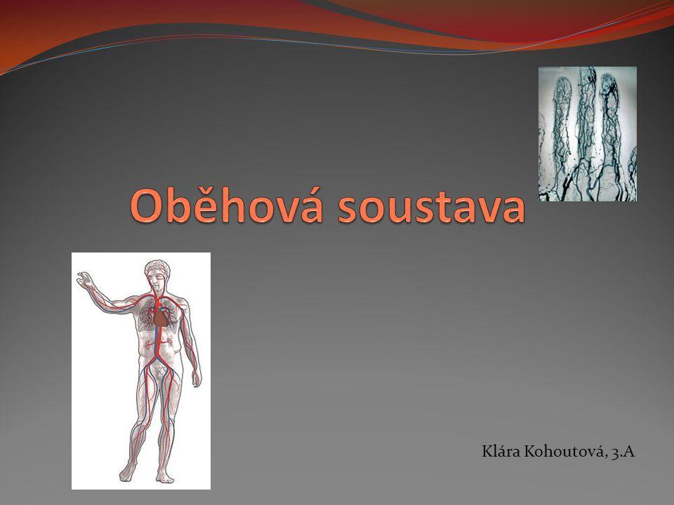 Klára Kohoutová, 3.A