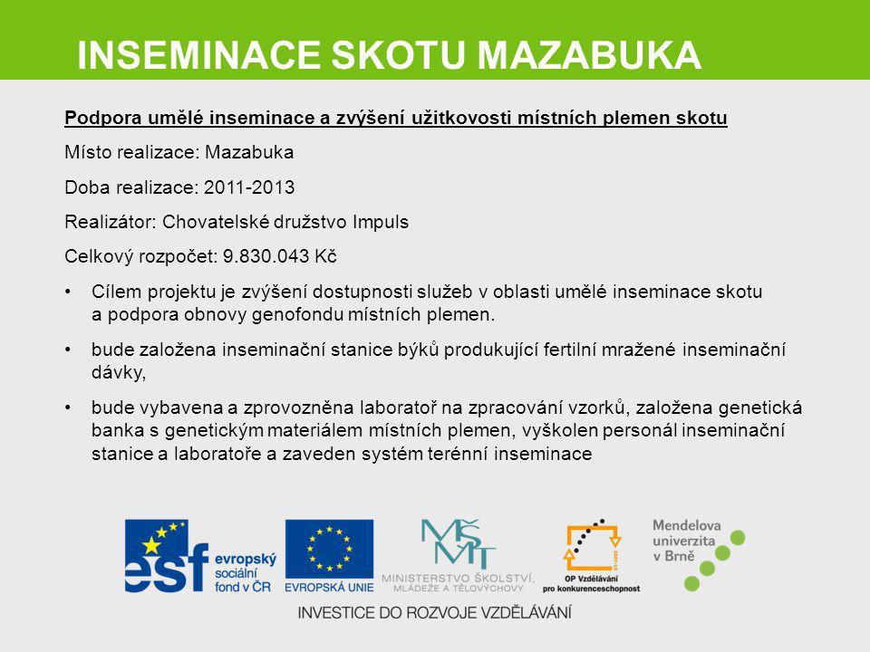 INSEMINACE SKOTU MAZABUKA Podpora umělé inseminace a zvýšení užitkovosti místních plemen skotu Místo realizace: Mazabuka Doba realizace: 2011-2013 Rea