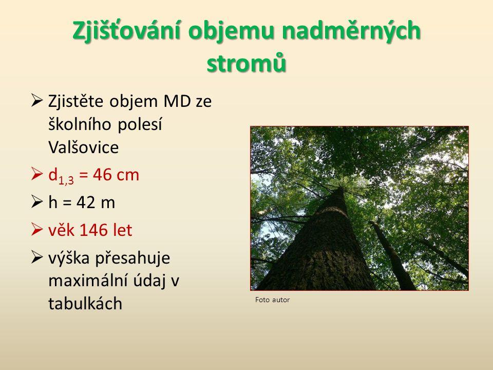 Zjišťování objemu nadměrných stromů  Zjistěte objem MD ze školního polesí Valšovice  d 1,3 = 46 cm  h = 42 m  věk 146 let  výška přesahuje maximální údaj v tabulkách Foto autor