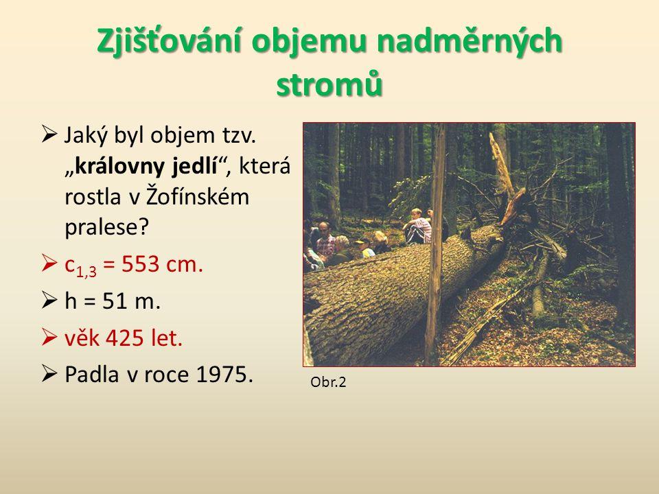 """ Jaký byl objem tzv.""""královny jedlí , která rostla v Žofínském pralese."""