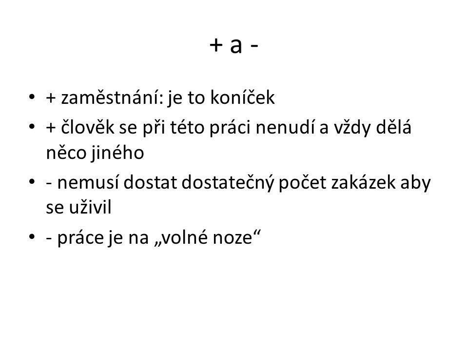 Zdroje http://www.budoucnostprofesi.cz/ http://www.pracovnimisto.cz/ Klára Božková