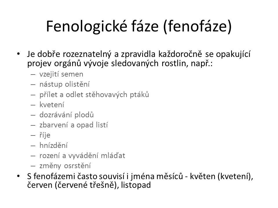 Příklady popsaných fenologických fází fenofáze