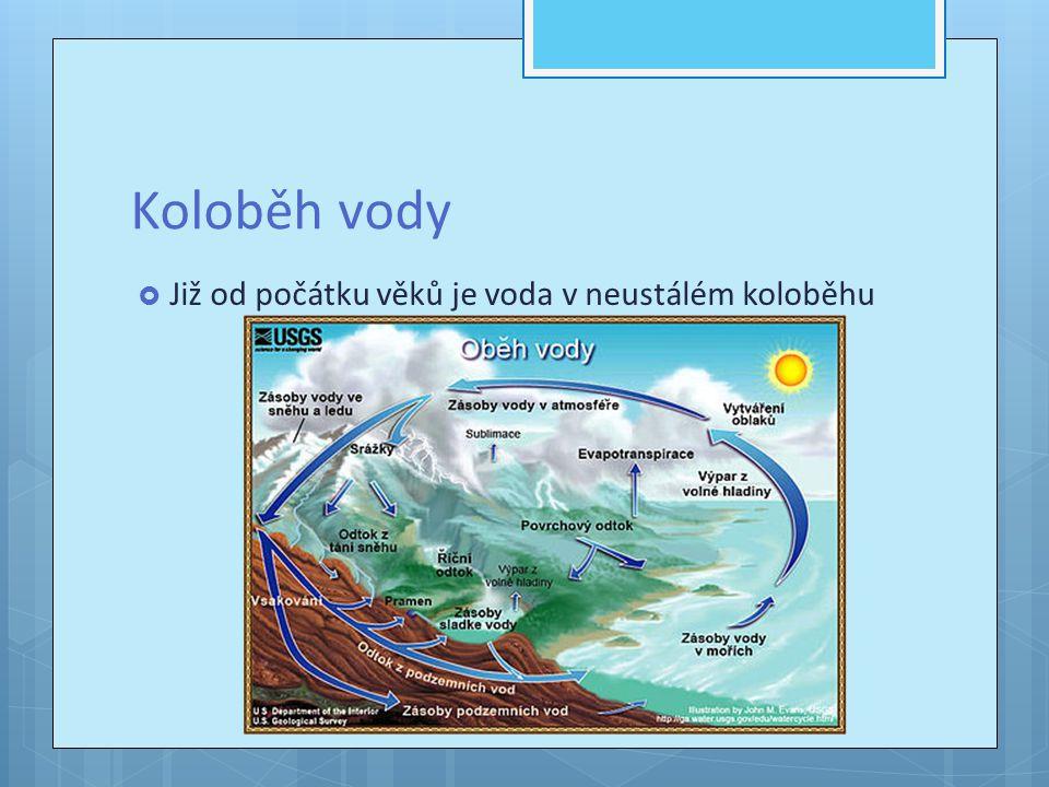 Vodní elektrárny  Velký podíl celkové produkce elektřiny vykazují vodní elektrárny.