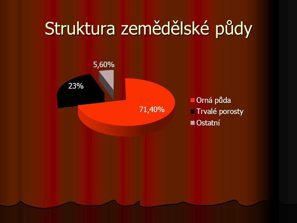 Počet zaměstnanců v zemědělství dle ČSÚ RokPočet zaměstnanců 1989567 tis. 2000176 tis. 2008141 tis.