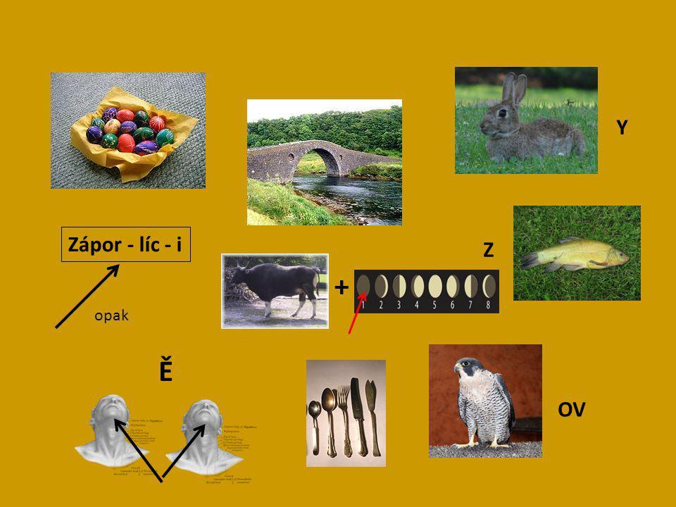Zápor - líc - i Y Z OV Ě opak +