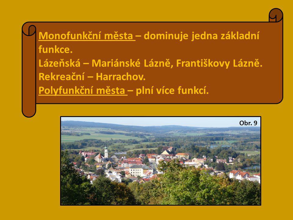 Monofunkční města – dominuje jedna základní funkce. Lázeňská – Mariánské Lázně, Františkovy Lázně. Rekreační – Harrachov. Polyfunkční města – plní víc
