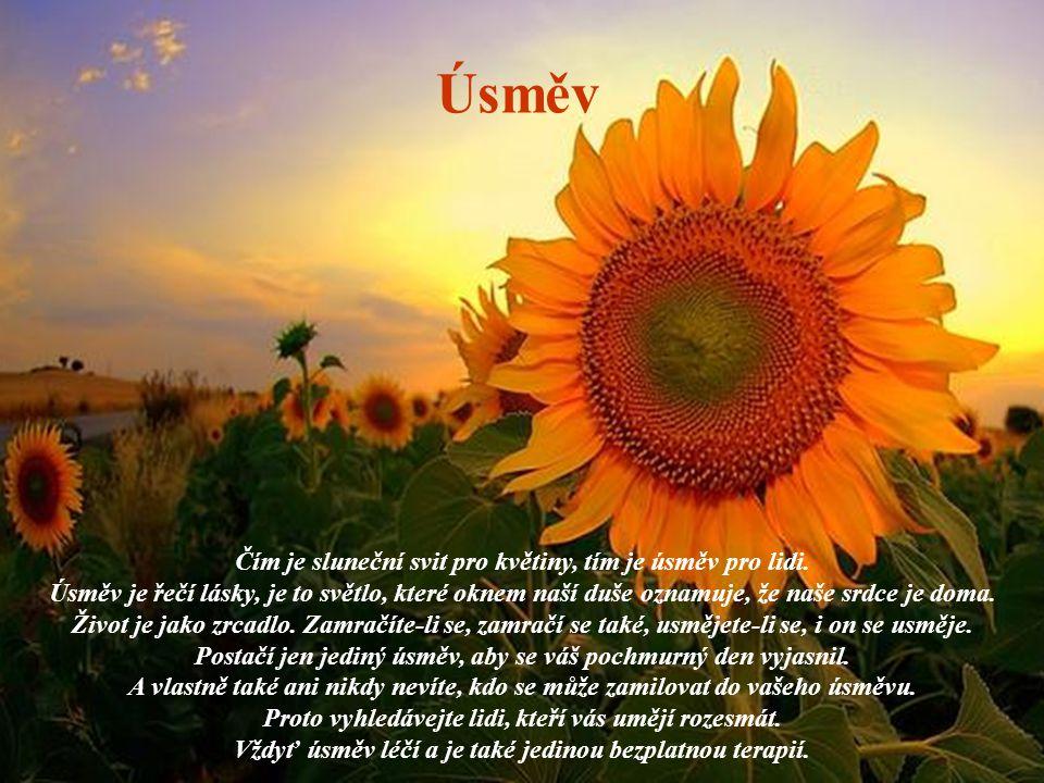 Úsměv Čím je sluneční svit pro květiny, tím je úsměv pro lidi. Úsměv je řečí lásky, je to světlo, které oknem naší duše oznamuje, že naše srdce je dom