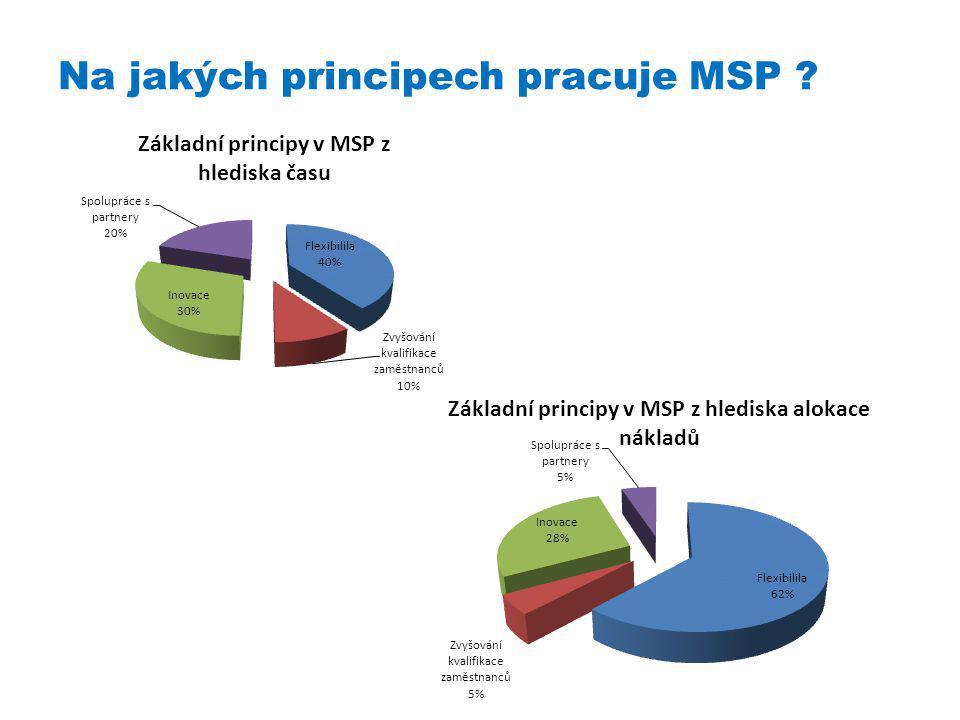 Na jakých principech pracuje MSP ?