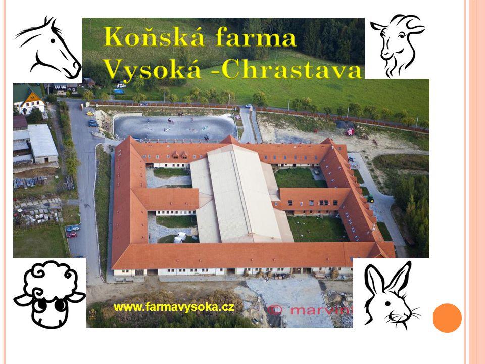 www.farmavysoka.cz
