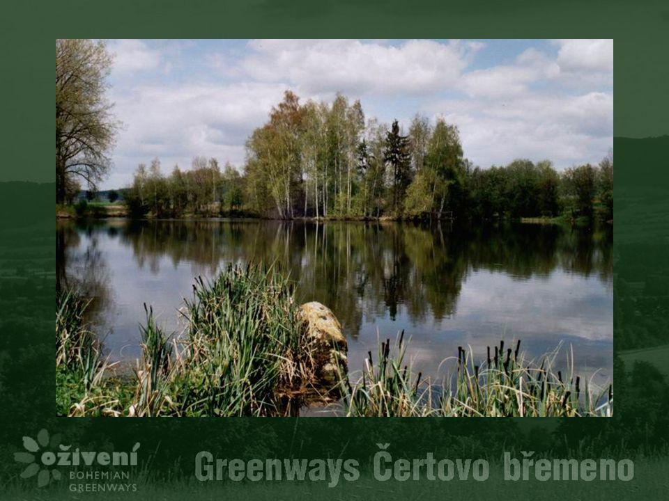 Děkuji za pozornost Štěpán Boháč Oživení – Bohemian Greenways www.greenways.cz