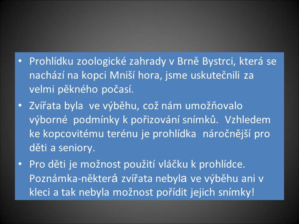 Automatický přechod snímků Návštěva ZOO v Brně 1.10. 2012