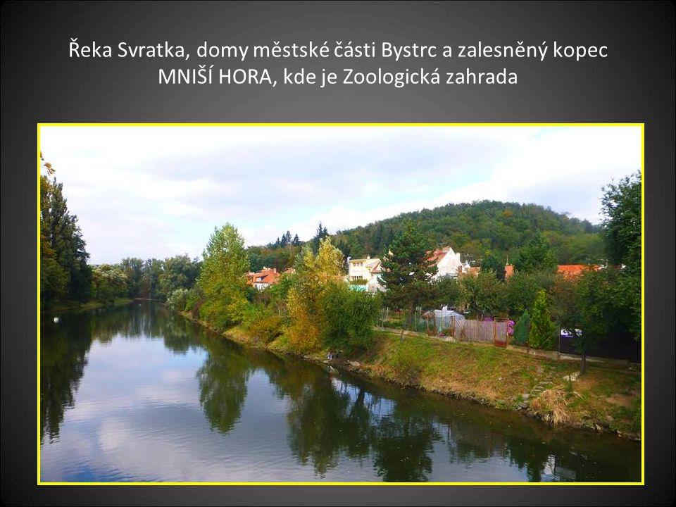 Řeka Svratka, domy městské části Bystrc a zalesněný kopec MNIŠÍ HORA, kde je Zoologická zahrada