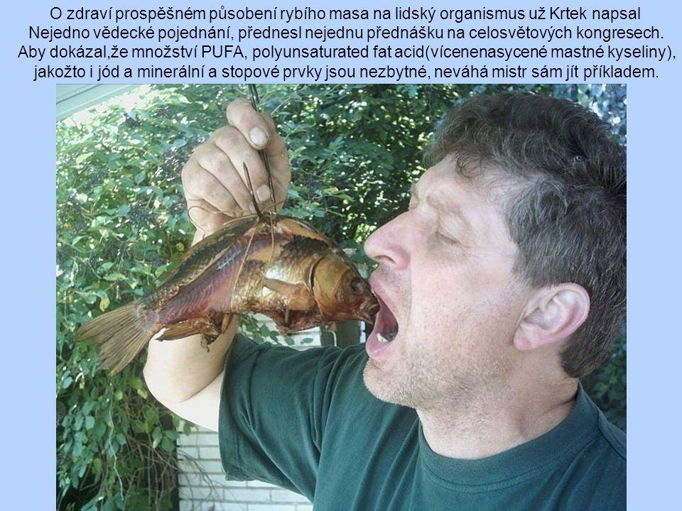 O zdraví prospěšném působení rybího masa na lidský organismus už Krtek napsal Nejedno vědecké pojednání, přednesl nejednu přednášku na celosvětových kongresech.