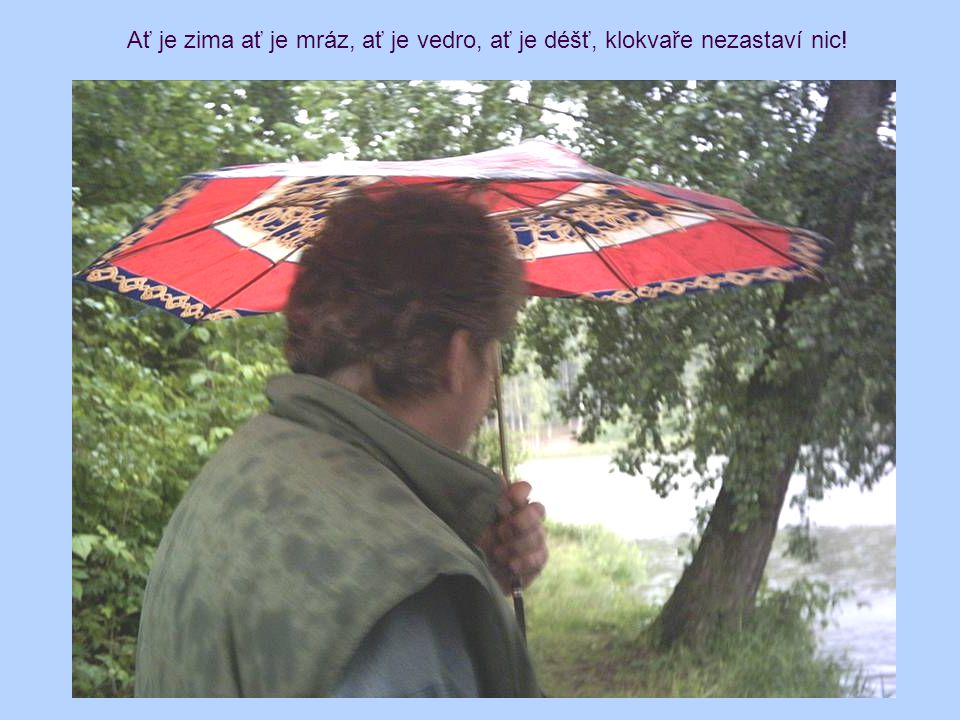 Ať je zima ať je mráz, ať je vedro, ať je déšť, klokvaře nezastaví nic!