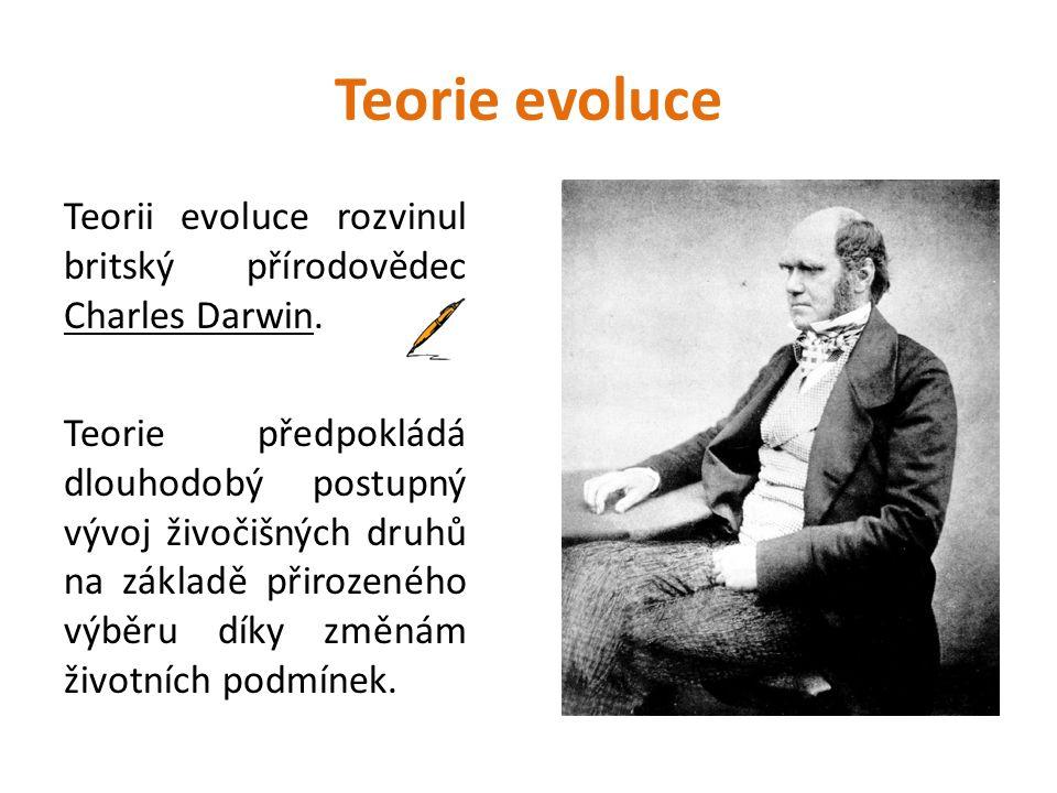 Teorie evoluce Teorii evoluce rozvinul britský přírodovědec Charles Darwin.