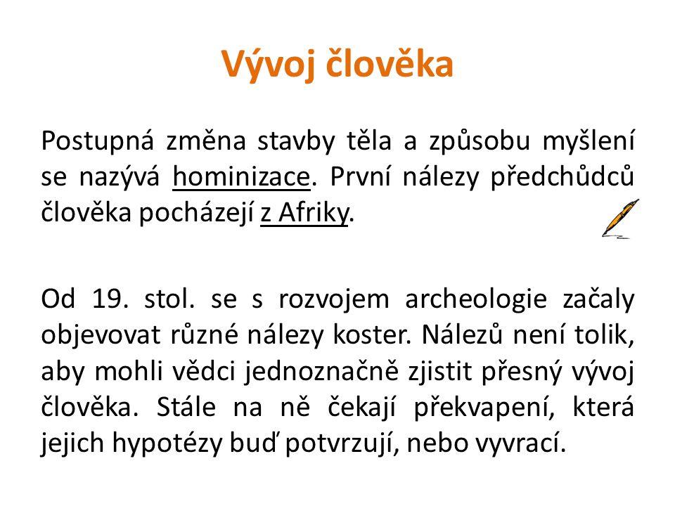 Vývoj člověka Postupná změna stavby těla a způsobu myšlení se nazývá hominizace.