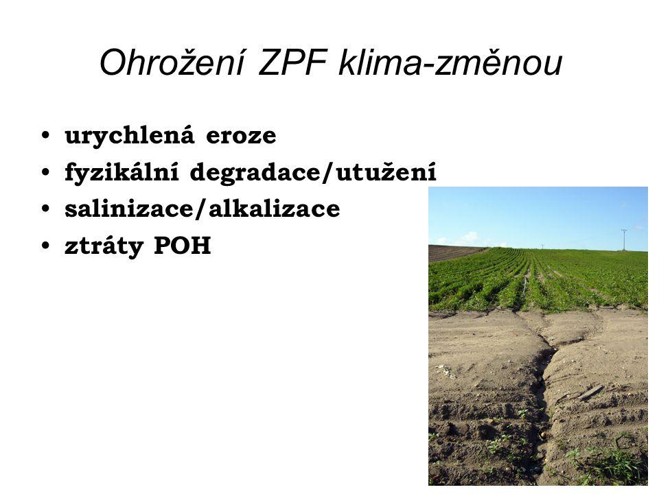 Ohrožení ZPF klima-změnou urychlená eroze fyzikální degradace/utužení salinizace/alkalizace ztráty POH