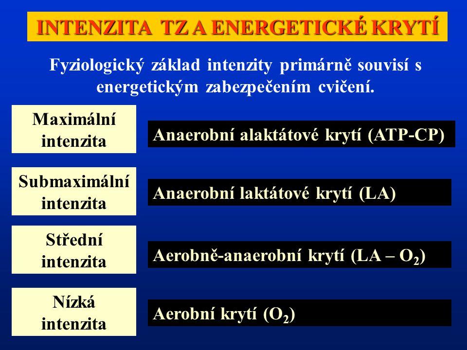 INTENZITA TZ A ENERGETICKÉ KRYTÍ Maximální intenzita Submaximální intenzita Střední intenzita Nízká intenzita Anaerobní alaktátové krytí (ATP-CP) Anaerobní laktátové krytí (LA) Aerobně-anaerobní krytí (LA – O 2 ) Aerobní krytí (O 2 ) Fyziologický základ intenzity primárně souvisí s energetickým zabezpečením cvičení.