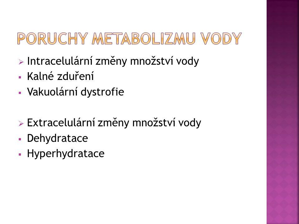  Intracelulární změny množství vody  Kalné zduření  Vakuolární dystrofie  Extracelulární změny množství vody  Dehydratace  Hyperhydratace