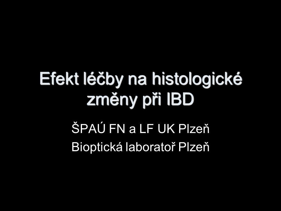 Efekt léčby na histologické změny při IBD ŠPAÚ FN a LF UK Plzeň Bioptická laboratoř Plzeň