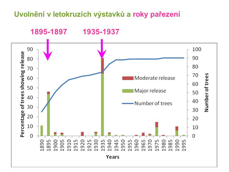 Uvolnění v letokruzích výstavků a roky pařezení 1895-18971935-1937